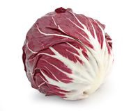 Red radicchio cabbage. On white background Stock Image