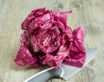 Red radicchio. Fresh red radicchio on wooden table Stock Images