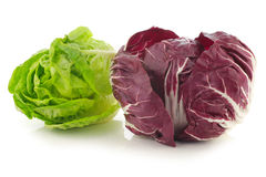 Red radicchio lettuce and green little gemlettuce. On a white background Stock Photo