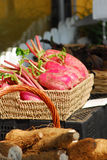 Red radish. Root in food market Royalty Free Stock Photography