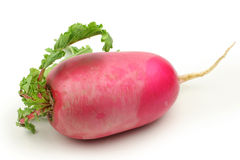 Red radish Stock Photo