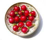 Red radish Stock Images
