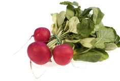 Red radish royalty free stock images