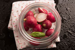Red radish with basil leaf in glass jar on black water drop background. Stock Photos