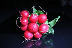 Red radish on black reflective studio background. Isolated black shiny mirror mirrored background for every concept.. Stock Images