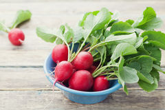 Red radish in blue bowl on rustic wooden table, organic food, garden vegetables Royalty Free Stock Photo