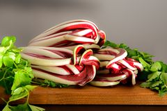Red radish and celery royalty free stock images