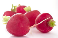 Red radish cut in half Stock Image