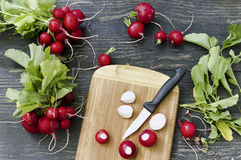 Red radish on cutting board. Fresh red radishes on a cutting board Stock Images