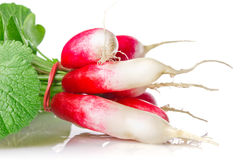 Red radish with green leaves Stock Photo
