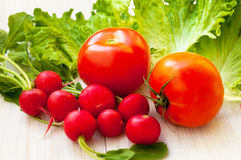 Red radish, lettuce and tomato. Organic lettuce, red radish and juicy tomato on the table Stock Photography