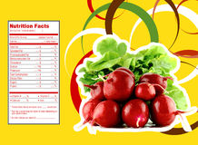 Red radish nutrition facts. Creative Design for radish with Nutrition facts label royalty free illustration