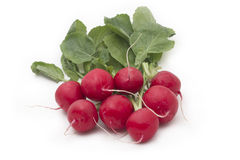 Red radish. Red organic radish on white background royalty free stock images