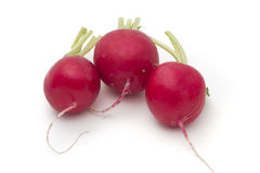 Red radish. Red organic radish on white background royalty free stock image