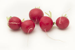 Red radish. Red organic radish on white background royalty free stock photography