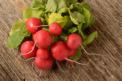 Red radish Royalty Free Stock Photography