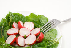 Red radish salad. On the plate Stock Photos