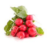 Red radish vegetable. Bunch of red radish, vegetable isolated on white Stock Photos