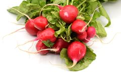 Red Radish on White Background. Bright red radishes with long green stems and leaves arranged on a seamless white background Royalty Free Stock Photos