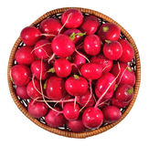 Red radish in a wicker bowl on a white Stock Images