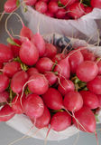 Red Radishes. Big red radishes in buckets at an outdoor market Stock Photo
