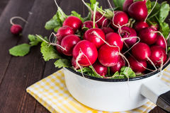 Red radishes in bowl on wooden table. Vegetable of cabbage family. Horizontal photo Stock Photos