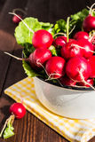 Red radishes in bowl on wooden table. Vegetable of cabbage family. Vertical photo Stock Photo