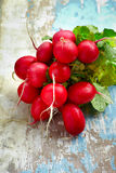 Red radishes bundle a Stock Images