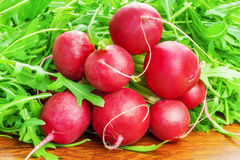 Red radishes with greens around Royalty Free Stock Photo