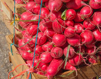 Red radishes at market Stock Photo