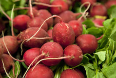 Red radishes at the market Stock Photos