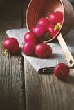 Red radishes on a napkin on wooden boards. Vertical Stock Photography