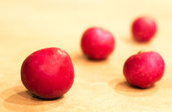 Red Radishes Stock Image