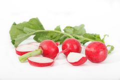 Red radishes and sliced radish on white background. Recipes with radish Royalty Free Stock Photo