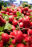 Red radishes in. Stacks of fresh red radishes arranged in a supermarket Royalty Free Stock Images