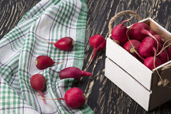 Red radishes in a wooden box. Royalty Free Stock Photo