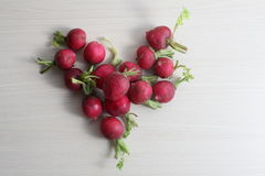 Red radishes on wooden cutting board, and  table. Red radishes on wooden cutting board, with hand, knife Stock Images