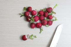 Red radishes on wooden cutting board, and  table. Red radishes on wooden cutting board, with hand, knife Royalty Free Stock Photo