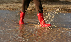 Red rain boots in puddle stock photography