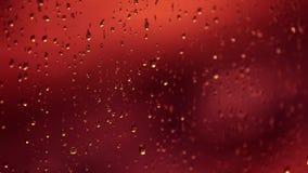 Red rain drops on window stock video