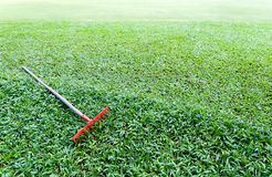 Red rake. On green grass Royalty Free Stock Photography
