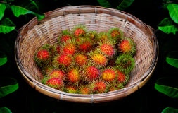 Red rambutan is in a baskets. With black background and leaves around Royalty Free Stock Images