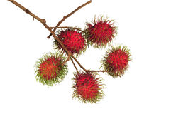 Red rambutan fruit Royalty Free Stock Photos
