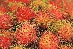 Red rambutan Stock Photos