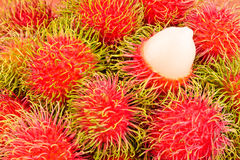 Red rambutan sweet delicious on  background healthy rambutan tropical fruit food isolated Stock Images