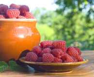 Red raspberries Stock Image