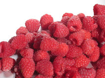Red Raspberries. A bunch of red raspberries Stock Photos