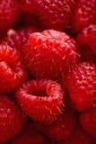 Red raspberries. Stock Photo