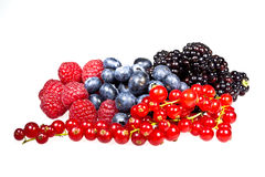Red raspberries, Black berries, red currants and blue berries Stock Photos