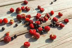 Red raspberries and black currant on old wooden table. As ingredient to healthy cocktail, beverage, yogurt, smoothie Stock Images